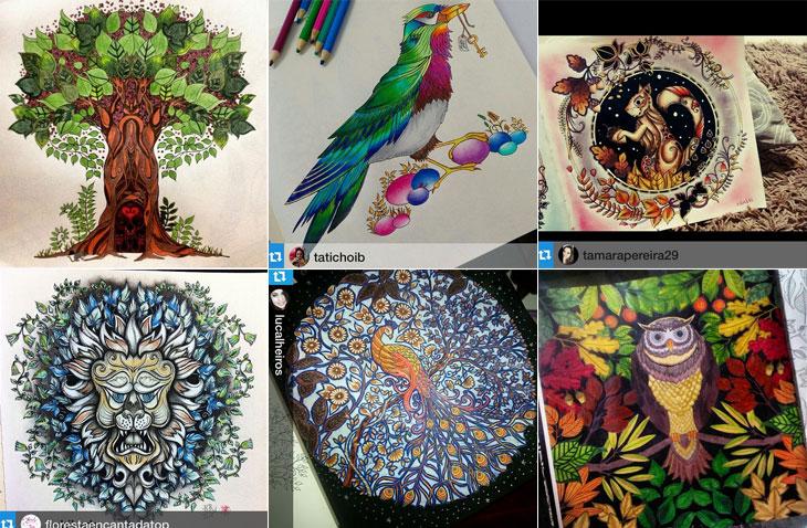 Inspiração de livro de colorir para adulto Jardim Secreto